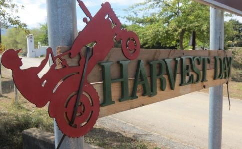 harvest_day