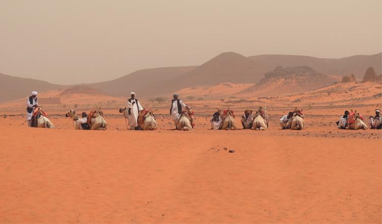 Soedan se skatte