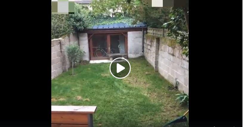 VIDEO: Tuin-transformasie